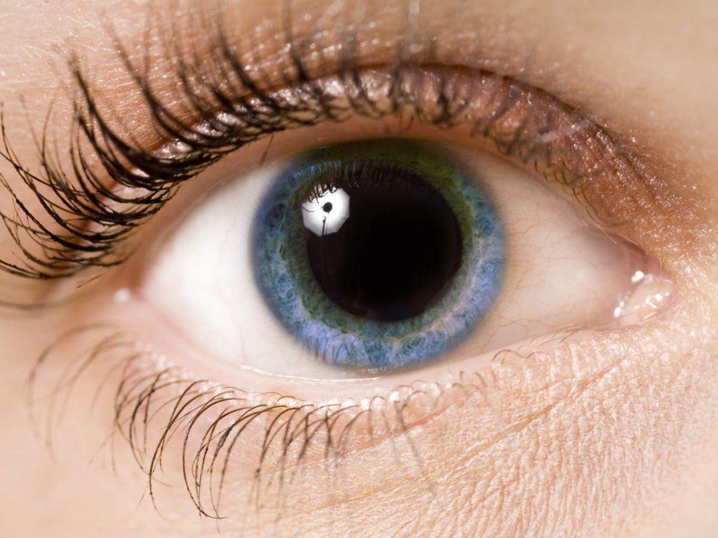 Слика на око со анизокорија.